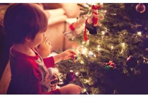 圣诞树如何出口?圣诞树国际物